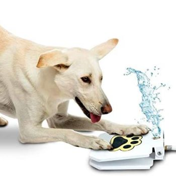 automatic outdoor dog water fountain 18