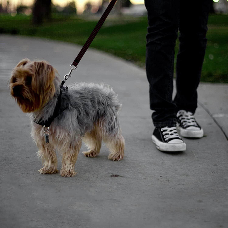 dog car seatbelt set (2pcs) 4