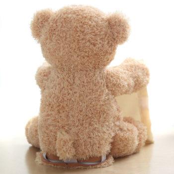 peek-a-boo bear toy 13