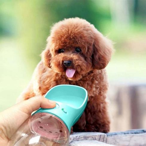 portable pet water bottle 14