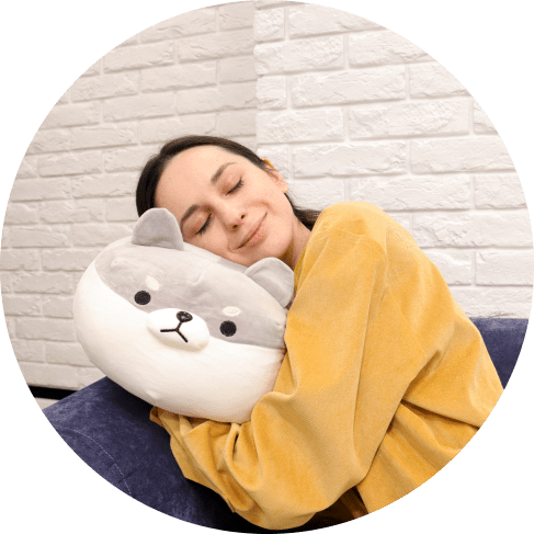 corgi plush pillow 13