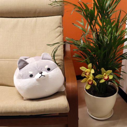 corgi plush pillow 10