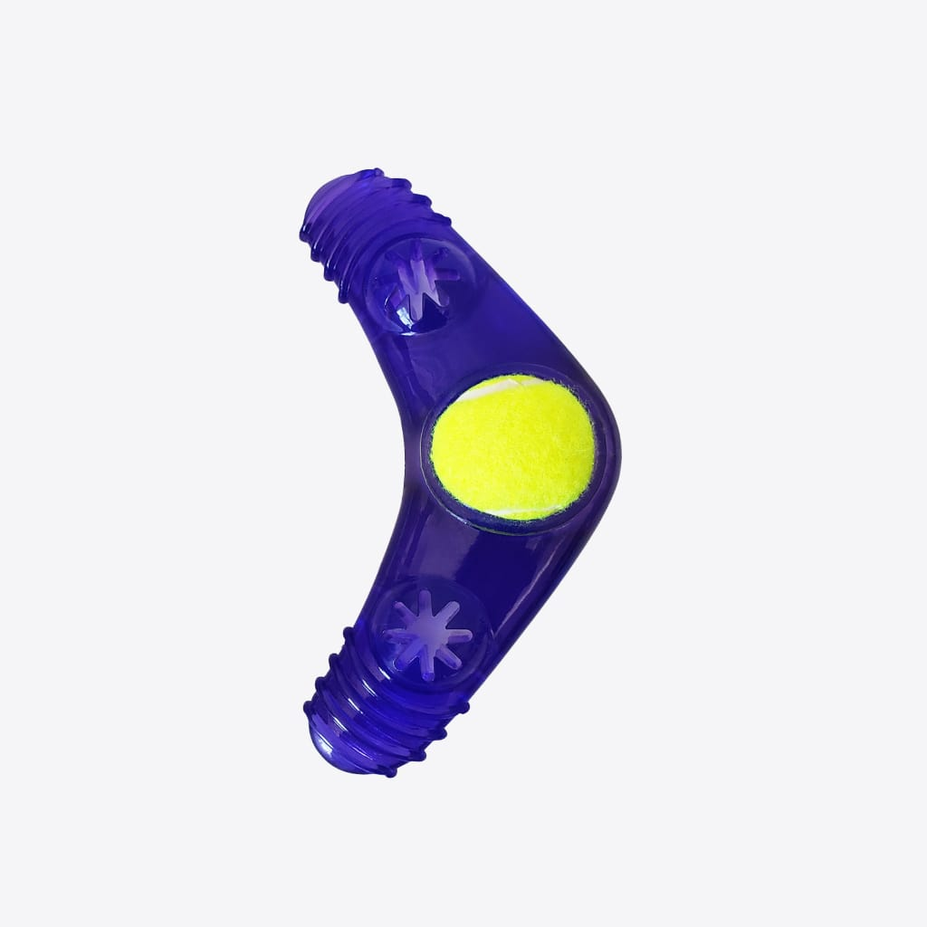 boomerang squeaker toy with treat fill 1