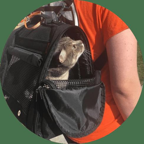 hideaway backpack - black 14
