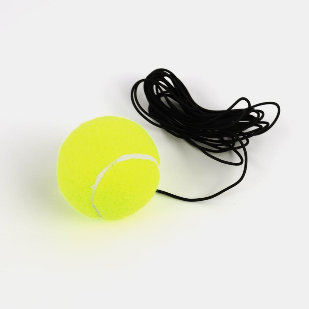 tennis trainer tool 4