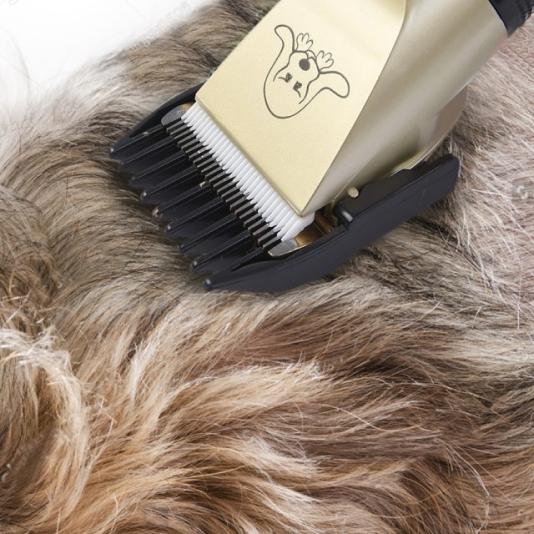 pet grooming tool 14