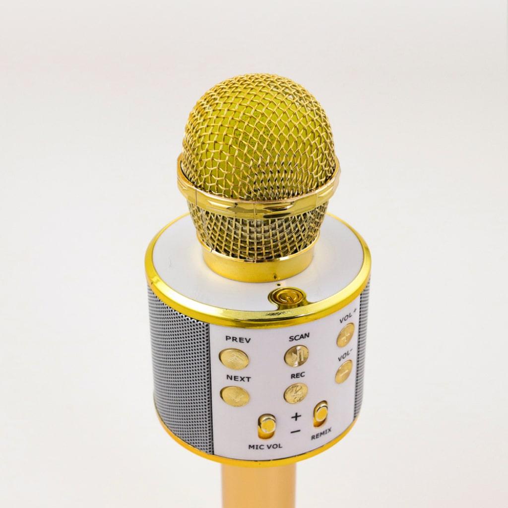 wireless karaoke microphone 4