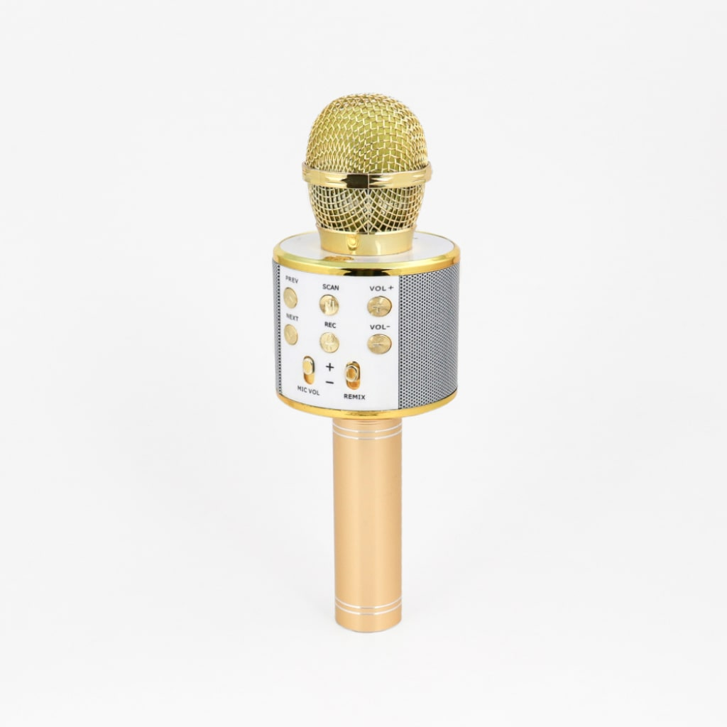 wireless karaoke microphone 1
