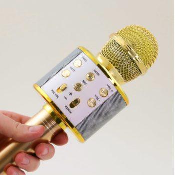 wireless karaoke microphone 12