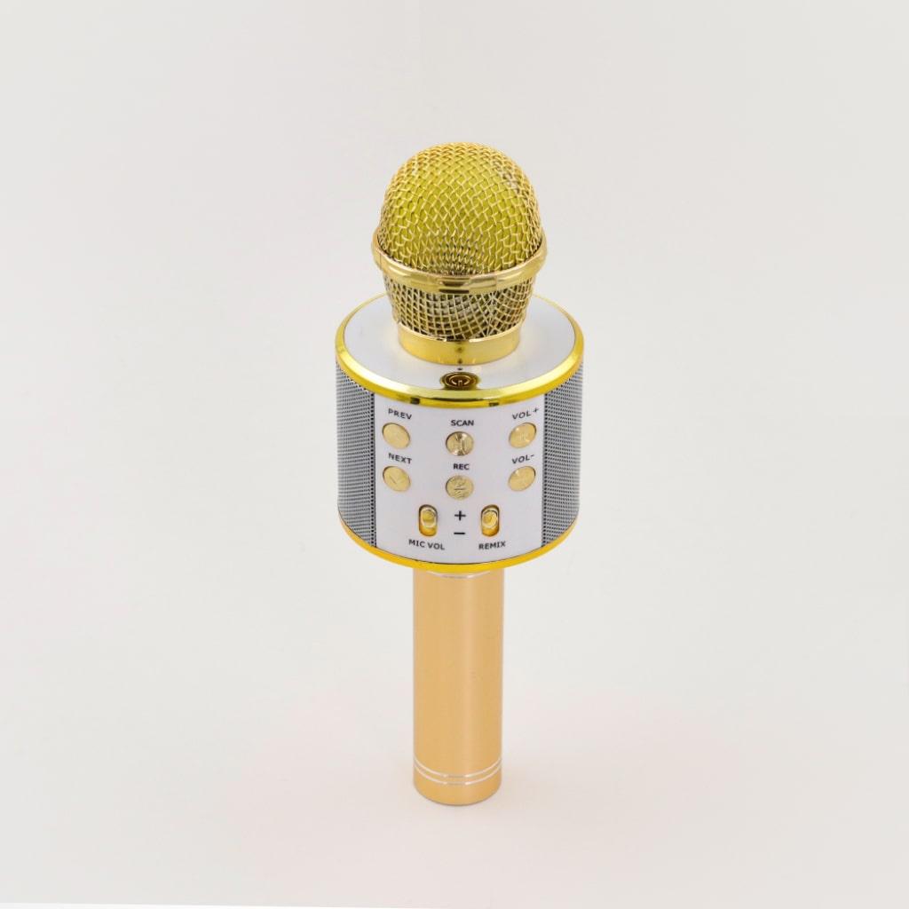 wireless karaoke microphone 2