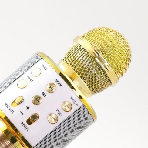 wireless karaoke microphone 14